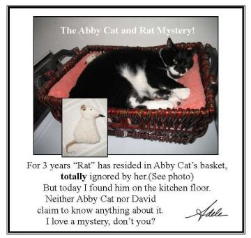 Abby Cat & Rat Mystery