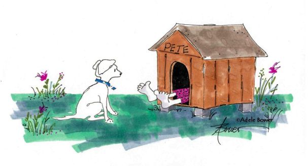 Trapped in The Doghouse with copyright