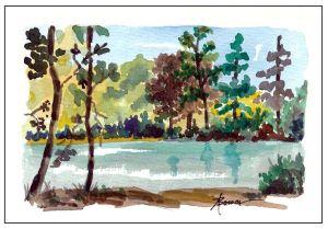 22-Deep Woods Pond for FB