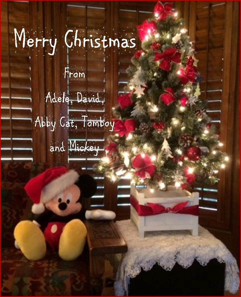 our disney world christmas tree